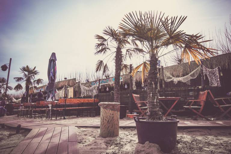 Strandbar443 in Worms - Gallery